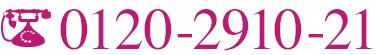 0120-2910-21